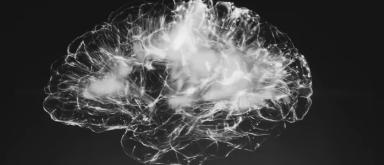 App van de week: Peak - Brain Training