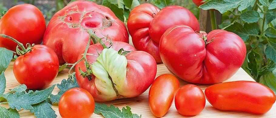 Misvormde groenten en fruit: is er wat mis mee?   Consumentenbond Community