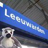 NL Rail