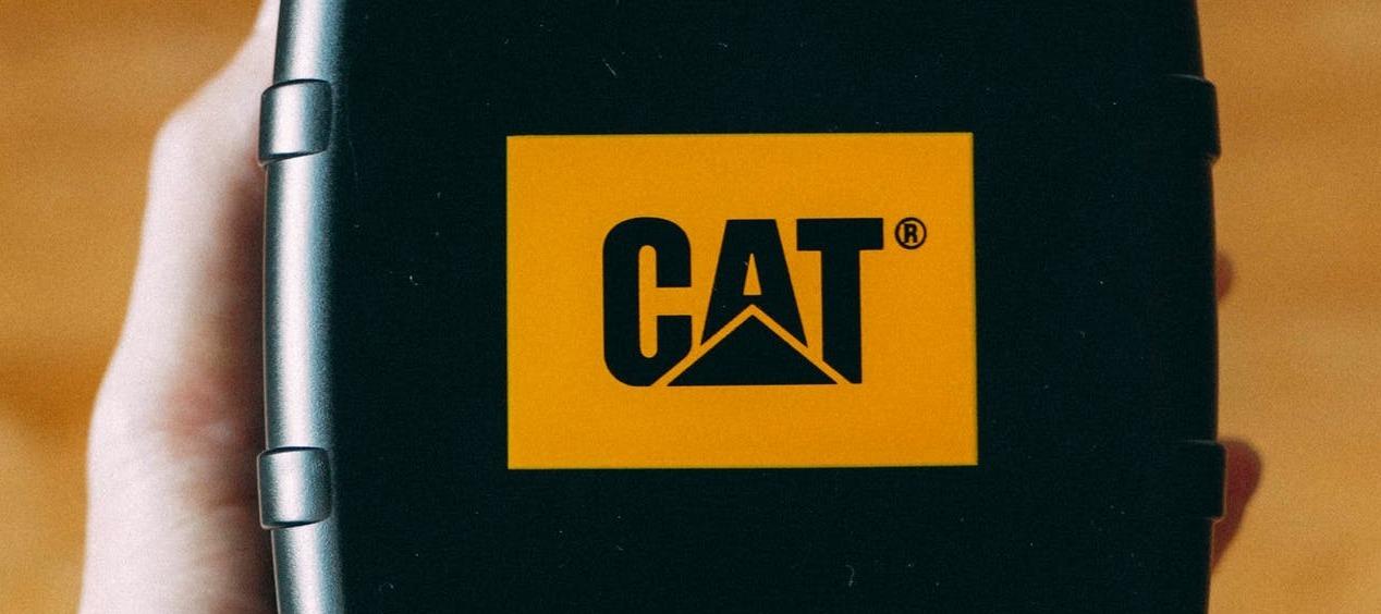 Mein Test des CAT S61