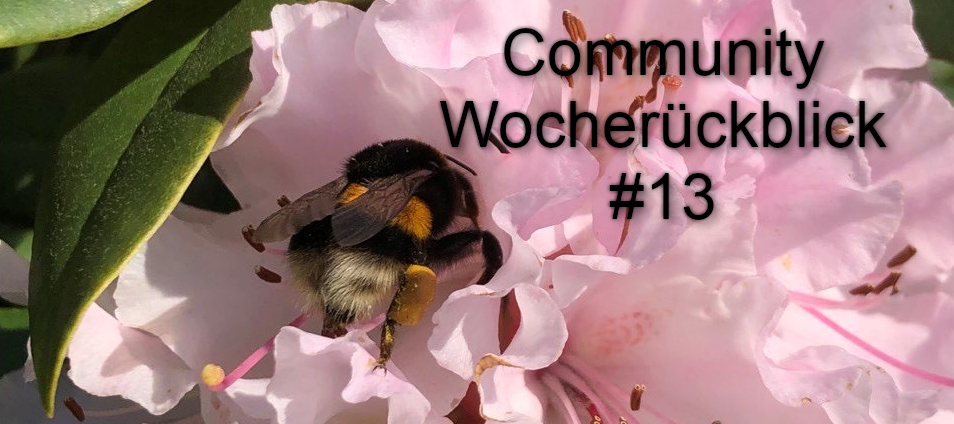 Community Wochenrückblick #13