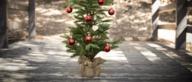 Echte VS Kunstkerstbomen - wat is duurzamer?