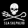 Seashepherd1