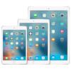 iPadMax